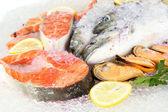 Fresh seafood on ice — Stock Photo