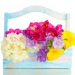 Beautiful bouquet of freesias in wooden basket, isolated on white - Lizenzfreies Foto