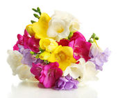 Beautiful bouquet of freesias, isolated on white — Stock Photo