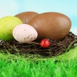 Stock Photo: Composition of Easter and chocolate eggs in nest on grass on natural background