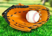 Baseball glove and ball on grass in park — Stok fotoğraf