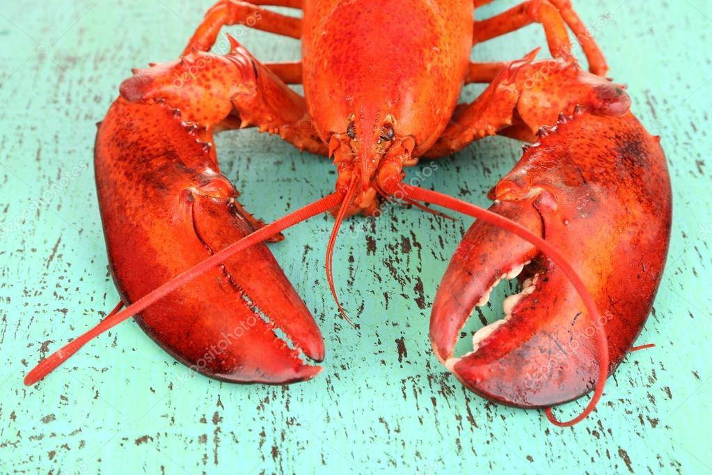 red lobster case