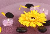 Pierres de spa avec des fleurs et des bougies dans de l'eau sur la plaque — Photo