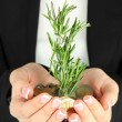 Woman hands with green plant and coins, close u — Stock Photo #21990081