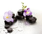 Pierres de spa et une fleur pourpre, sur fond humide — Photo