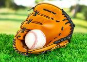 野球のグローブとボール公園の芝生の上 — ストック写真