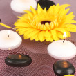 Spa stones with flower and candles in water on plate - Stock Photo