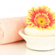 Rolled pink towel, soap bar and beautiful flower isolated on white - Stock Photo