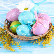 Easter eggs in basket and mimosa flowers, on blue wooden background - 图库照片
