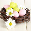Easter eggs in nest and mimosa flowers, on white wooden background - Stockfoto