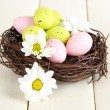 Easter eggs in nest and mimosa flowers, on white wooden background - Stock Photo