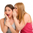 Two girl friends gossip isolated on white — Stock Photo