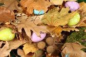 Huevos de pascua ocultados en hojas — Stockfoto