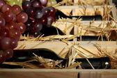 Cassa in legno con bottiglie di vino da vicino — Foto Stock