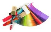 Brushes, paint-roller, colour guide isolated on white — Stock Photo