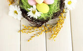 Easter eggs in nest and mimosa flowers, on white wooden background — Stock Photo