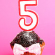 Birthday cupcake with chocolate frosting on pink background - Stock Photo