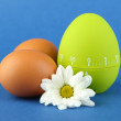 Green egg timer and eggs, on color background — Stock Photo