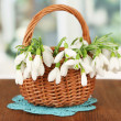 Spring snowdrop flowers in wicker basket,on wooden table, on bright background — Stock Photo #22475175