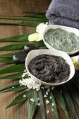 Composition avec de l'argile cosmétique pour les traitements de spa, sur fond de feuille de palmier — Photo