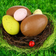 Composition of Easter and chocolate eggs in nest on grass background close-up — Stock Photo