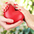 Red heart in woman and man hands, on green background — Stock Photo #22649067