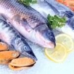 Fresh seafood on ice — Stock Photo #22649335