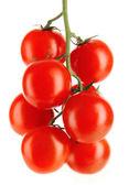 Cherry tomaten op een tak op wit wordt geïsoleerd — Stockfoto