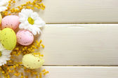 Easter eggs and mimosa flowers, on white wooden background — Stock Photo