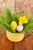 Uova di Pasqua in una ciotola con erba sul tavolo in legno da vicino — Foto Stock