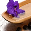 Stock Photo: Spstones and purple flower in wooden bowl, on wet background