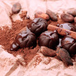 Composition of chocolate sweets, cocoa and spices on brown background — Photo