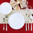 Holiday table setting, close up — Stock Photo #22791748