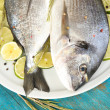 Two fish dorado with lemon on plate on blue wooden table close-up — Zdjęcie stockowe