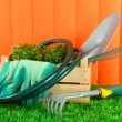 Garden tools on grass in yard — Foto Stock