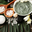 Composition with cosmetic clay for spa treatments, on palm leaf background — Stock Photo