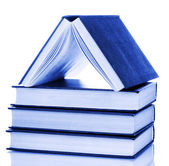 House built of books isolated on white — Stock Photo