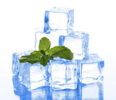 Ice with mint on light background — Stock Photo