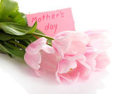 Beautiful bouquet of pink tulips for Mother's Day, isolated on white — Stock Photo