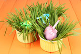 Easter eggs in bowls with grass on orange wooden table close up — Stock Photo