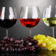 Assortment of wine in glasses on grey background — Stock Photo #22911420