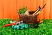 Attrezzi di giardino sull'erba nel cortile — Foto Stock