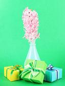Vazo ve renkli arka plan üzerinde güzel hediyeler güzel sümbül — Stok fotoğraf
