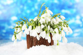 Bouquet of snowdrop flowers in vase with snow, on bright background — Stock Photo