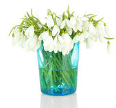 Bouquet of snowdrop flowers in glass vase, isolated on white — Stock Photo