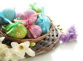 Bright easter eggs with bows in basket, isolated on white — Stockfoto
