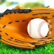 Baseball glove and ball on grass in park — Stockfoto
