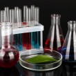 Stock Photo: Test-tubes and green leaf tested in petri dish, isolated on black