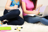 Two girl friends with with laptop on room — Stok fotoğraf