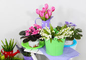 Decorative elements and flowers on table — Stock Photo
